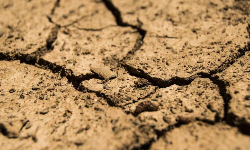 研究揭示了土壤细菌如何引发消耗温室气体.jpg