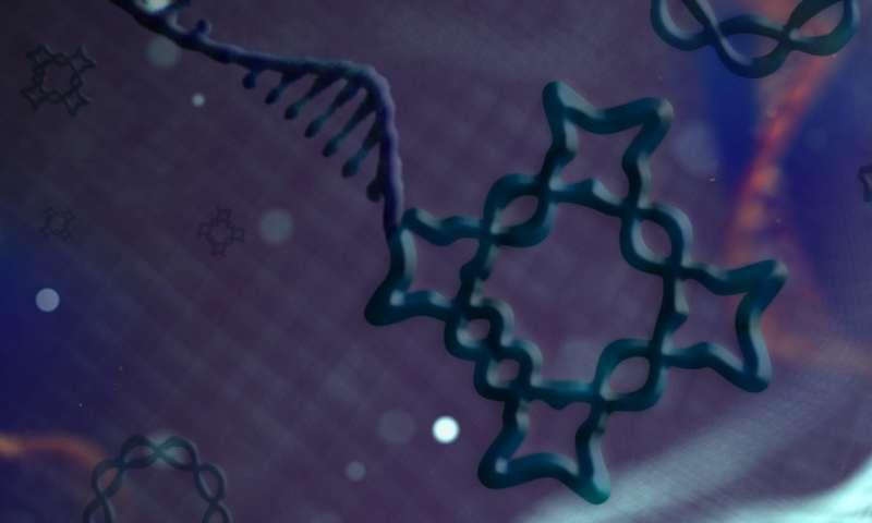 新的DNA纳米结构.jpg