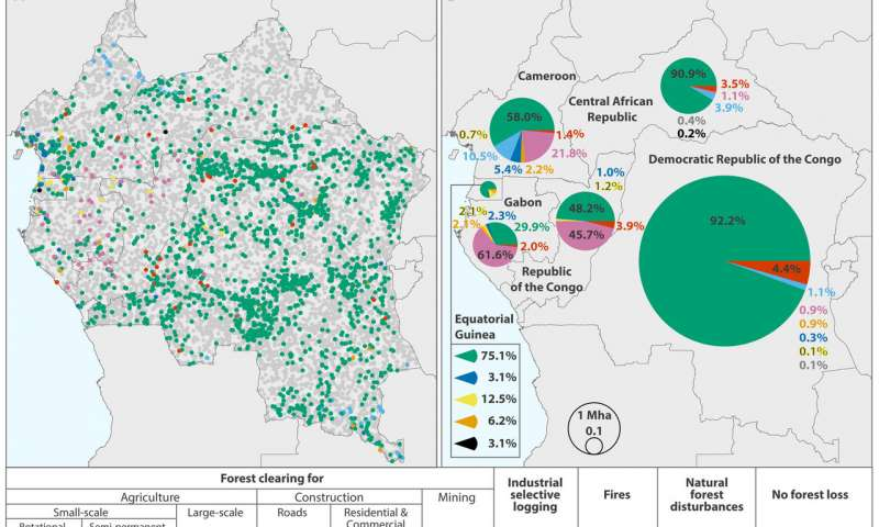 小农清理被认为是刚果盆地森林丧失的主要原因.jpg