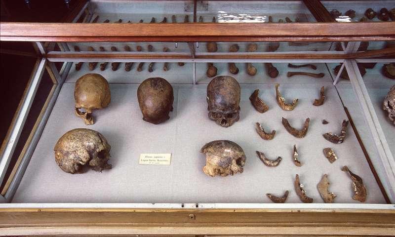 世界上最古老的天然木乃伊的DNA解开了美洲冰河时代部落的秘密.jpg