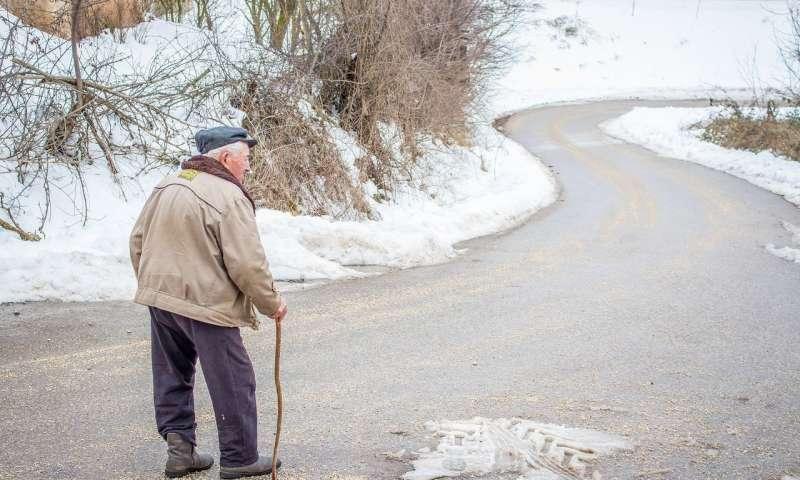 与老年人失去通常护理源有关的因素.jpg