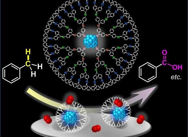 金属纳米粒子点燃了生态友好型催化剂的另一条道路.jpg