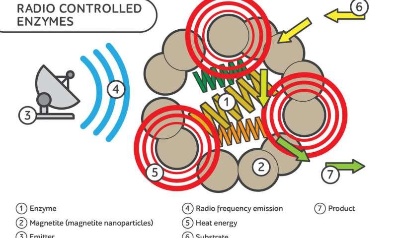 科学家开发了具有遥控功能的酶.jpg