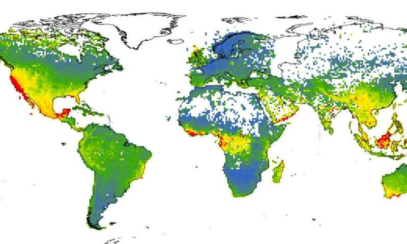 新的机器学习方法预测了对受威胁植物物种的全球清单的补充.jpg