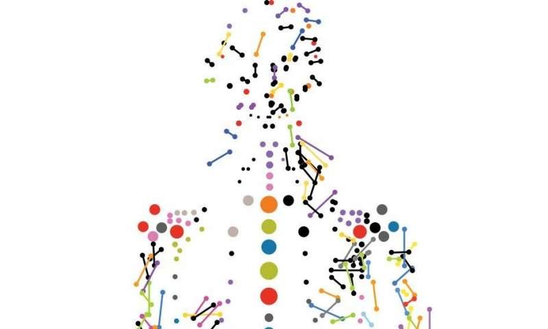 研究人员发现了产前环境调整基因组印记的证据.jpg
