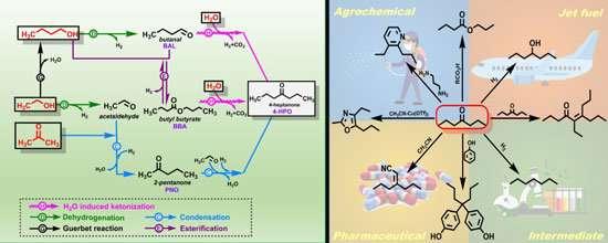 研究人员推进生物质转化过程.jpg