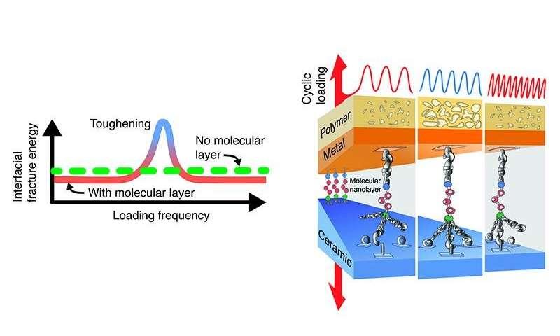 在动态加载过程中 Nanoglue可以使复合材料更加坚韧几倍.jpg