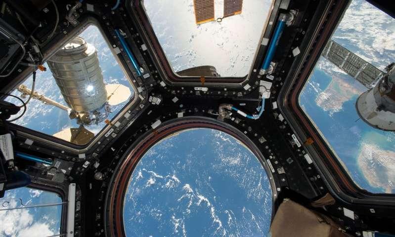 在太空和地球上制造植物药的新方法.jpg