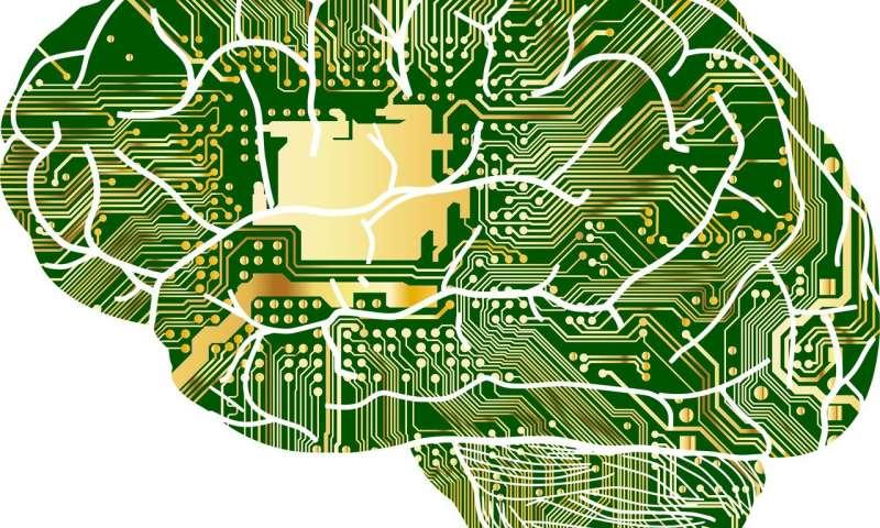 对人工智能趋势的调查发现了与人类语言合作的全球影响力.jpg