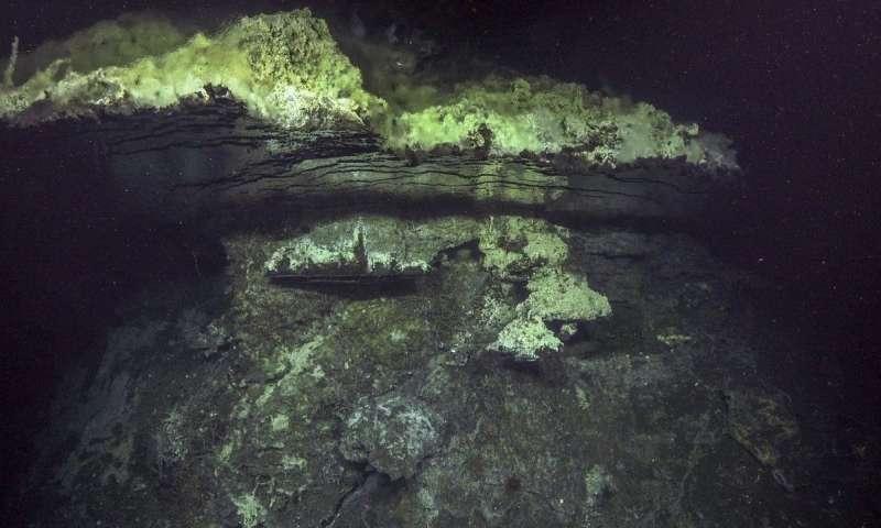 新的海底地图导致热液喷口和物种发现.jpg