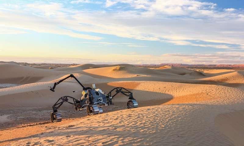 在火星般的摩洛哥进行了自驾车.jpg