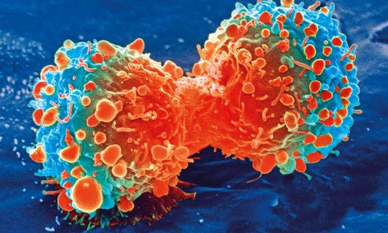 开创性研究的癌症代谢主题.jpg