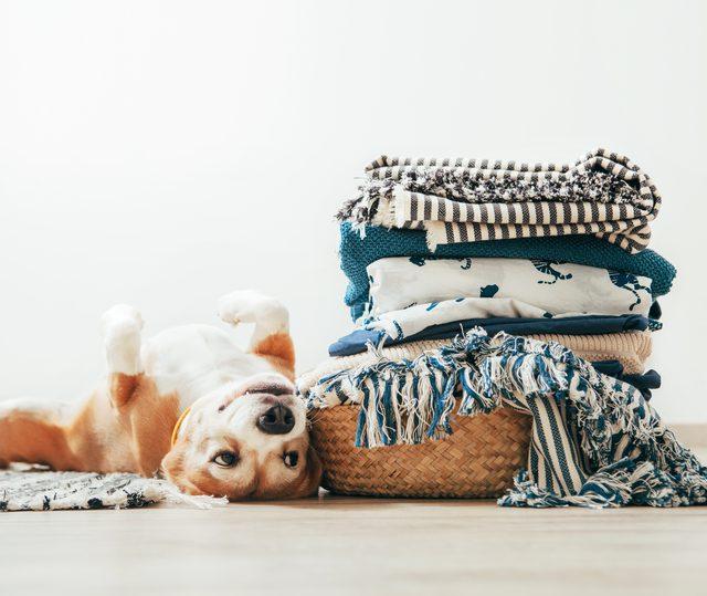 用醋洗衣服的10种基本方法8.jpg