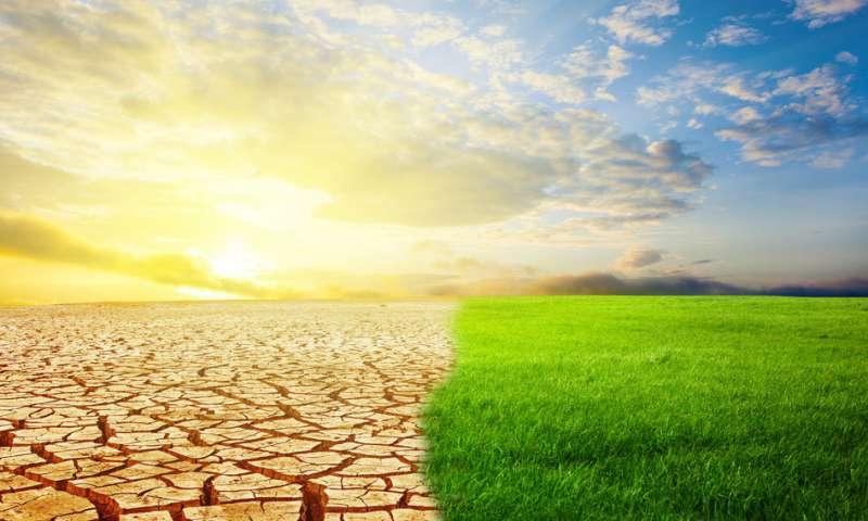 研究表明每隔2万年撒哈拉沙漠在郁郁葱葱和沙漠之间转换 与季风活动同步.jpg