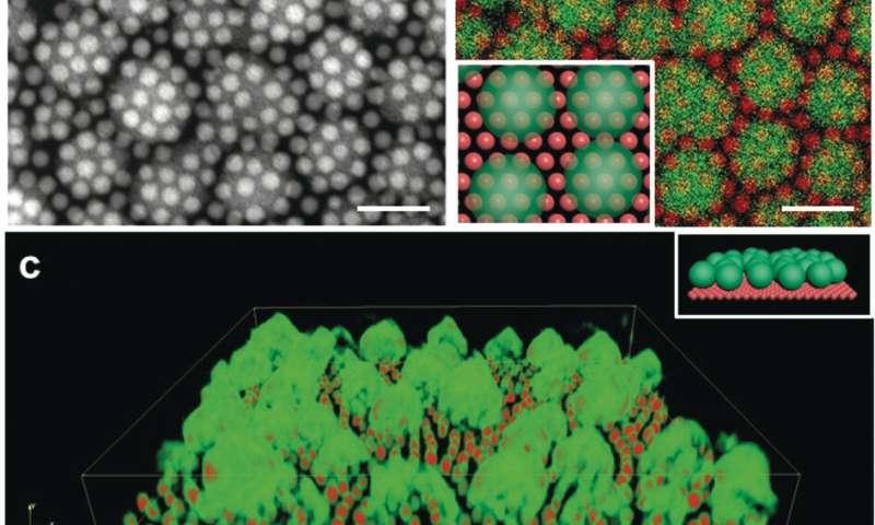 纳米晶体在用MOF加倍时变得更好.jpg