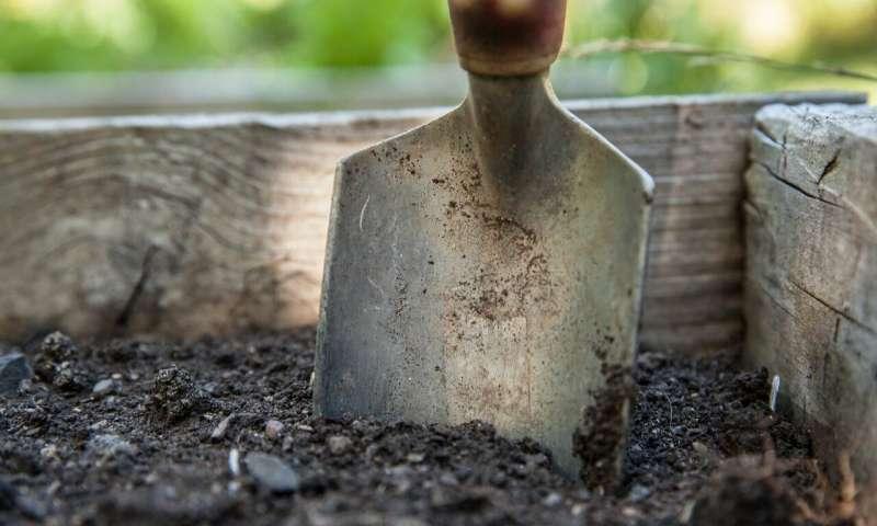 新论文指出土壤孔隙结构是碳储存的关键.jpg